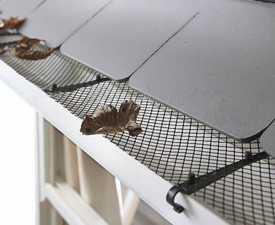 Plastic gutter mesh is installed on the roof with hangers and several leaves on it.