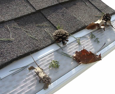 Micro mesh gutter guard on the roof and several debris on it.